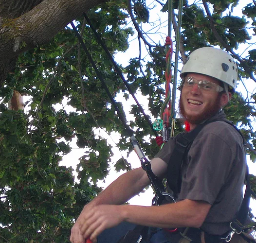 We always have a smile when you love what you do. Our specialist trimming a tree before winter hits us hard.